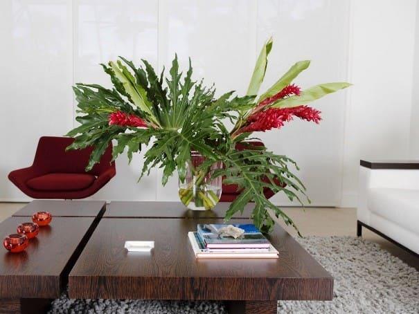 Цветы для офиса по фен шуй
